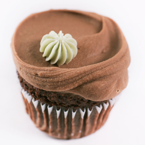 Vegan chocolate chip cupcake with chocolate frosting
