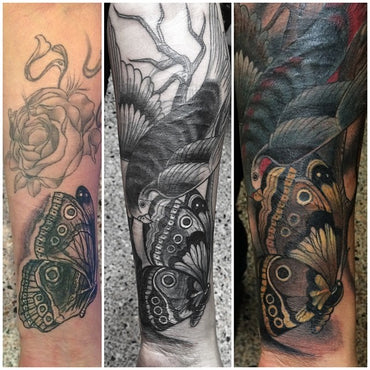 Triple Cover Up