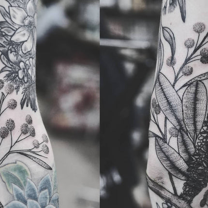 Wattle And Banksia Tattoo