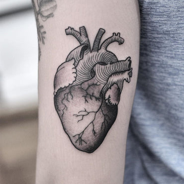 Fine Line Anatomical Heart Tattoo By PabloMorte
