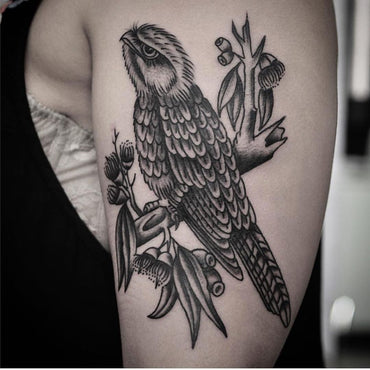 Tawny Frogmouth Tattoo By Australiana Master Mark Lording
