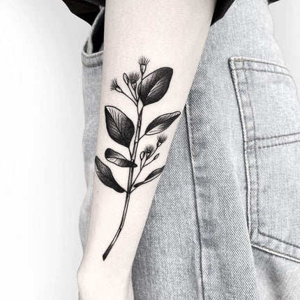Eucalyptus Branch Australiana Tattoo By Deanna Lee