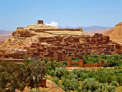 Argan oil in morocco