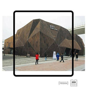 Portuguese Pavilion at Expo 2010 Shanghai was a surprise for its originality!