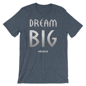 Dream BIG Slogan t-shirt - Lots of Shirt Colors