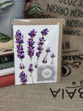 Greetings Card with Flower Seeds