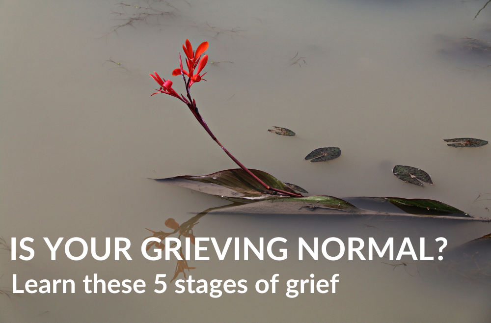 Is Your Grieving Normal? Know Your Stage Of Grief and Loss (5 Stages)