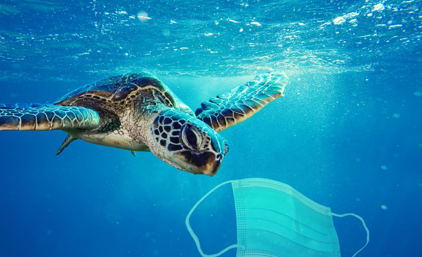 Image of disposable mask in the ocean