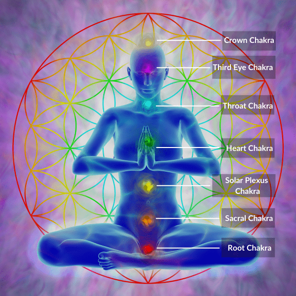 where are the 7 chakras located