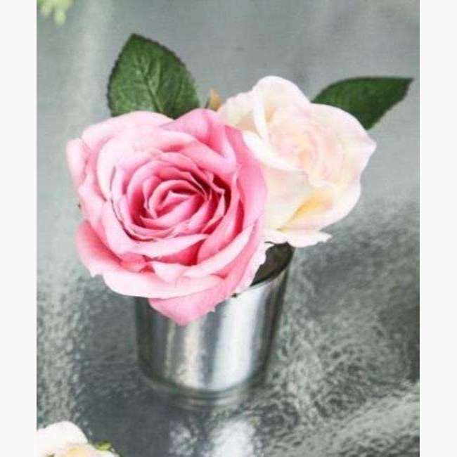 Pale Pink Roses in Silver Vase