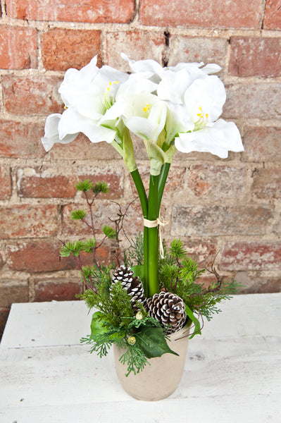 White Amaryllis, Berry & Fern Topiary Arrangement
