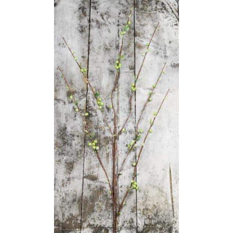 Snow & Ice Dusted Twig with Green Berries