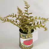 Woodland Fern In Vintage Printed Tin Can