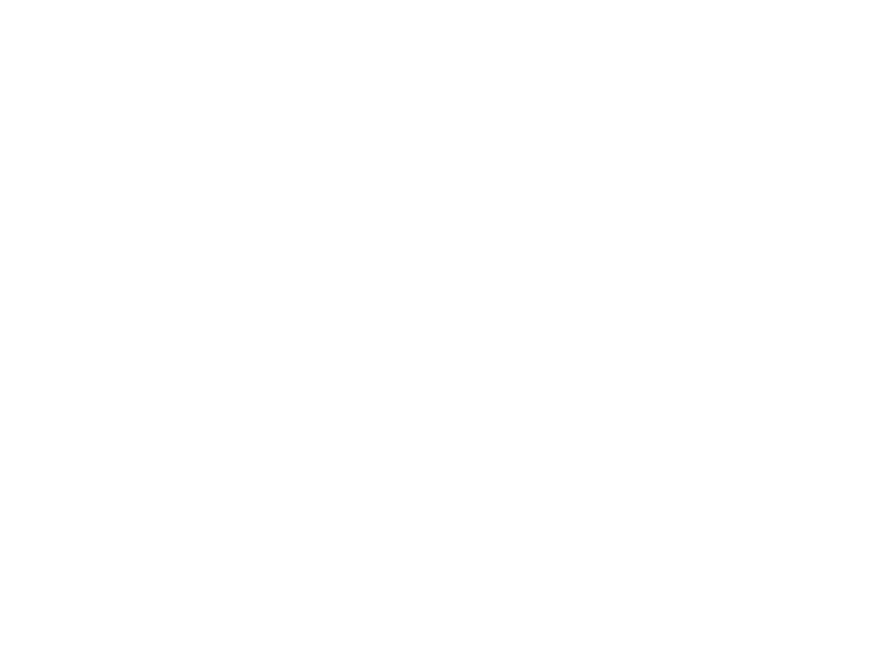 Space Pirate Trading Company
