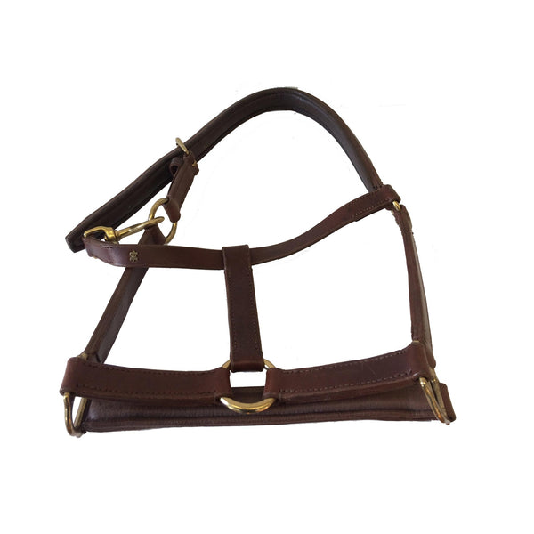 Advanced Saddle Fit - Dobert Classic Leather Halter