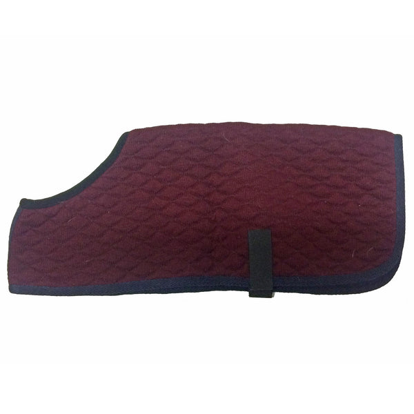 Advanced Saddle Fit - Thermatex Dog Coat