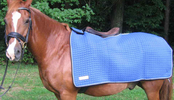 Advanced Saddle Fit - Thermatex Nordic Rug