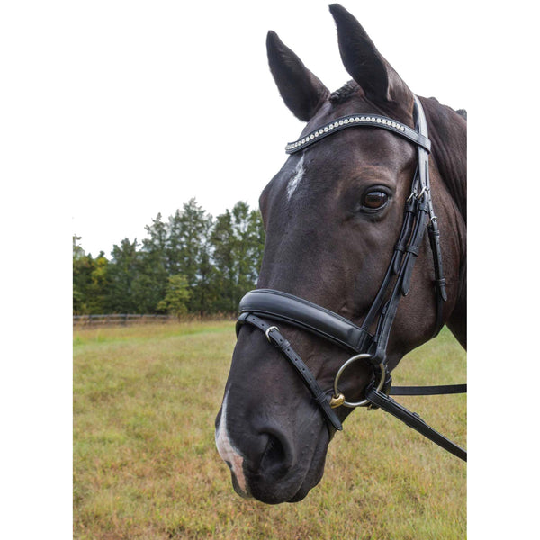 Vespucci Veritas Raised Dressage Snaffle Bridle - Advanced Saddle Fit