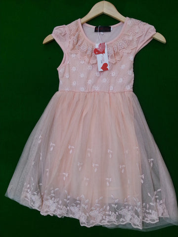 Peach Leaf Embroidery Netted Frock Girl's dresses- Available online on Buyvel