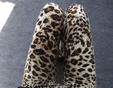 Leopard Leggings Leggings & Jeggings- Available online on Buyvel