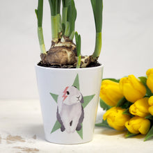 Load image into Gallery viewer, rabbit plant pot