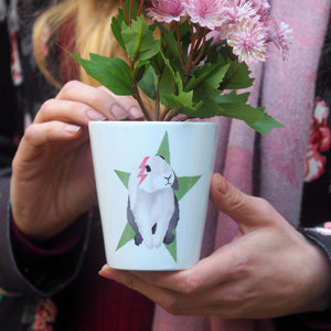 bunny plant pot gift for easter