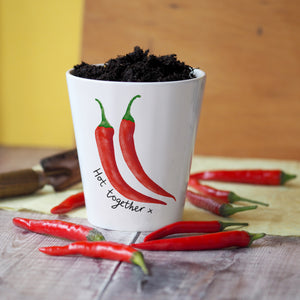 Hot together plant pot with chilli seeds