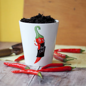 'Hot Chef' Chilli Plant Pot with chilli seeds