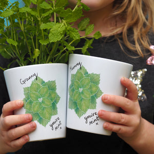 You're mint Planter gift for mums