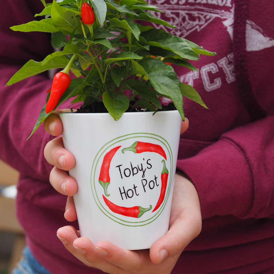 Personalised 'ring of fire' plant pot with chilli seeds