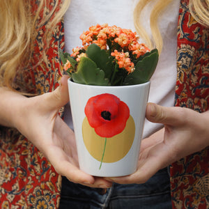 poppy we will remember them plant pot