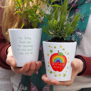 Rainbow Apple Teacher Personalised Plant Pot