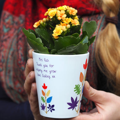 rainbow tree plant pot gift for teachers