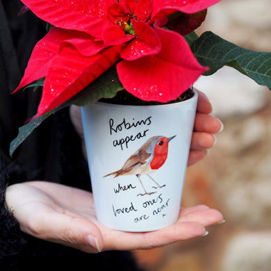 robin plant pot gift for christmas lost loved ones grieving mourning