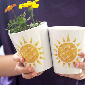 Sunshine Father's Day Planter