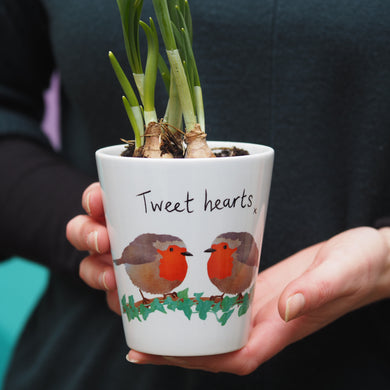 Robin couple plant pot