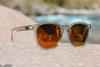 *NEW* Totem - Optic Nerve Polarized Sunglasses