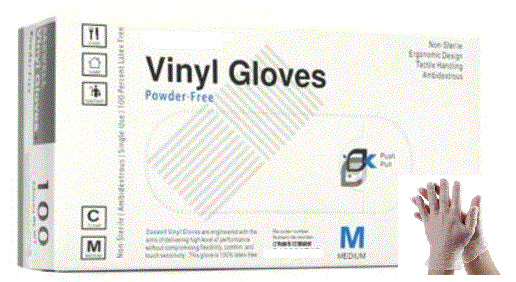 Vinyl Powder Free Examination Gloves (Case of 1,000)