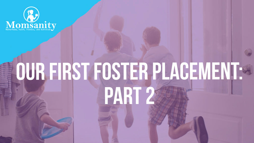 Our First Foster Placement:  Part 2