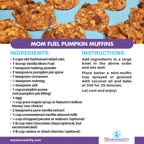 healthy pumpkin muffins recipe made with Mom Fuel protein powder