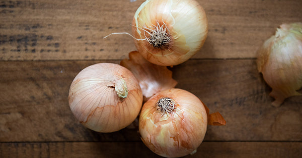 Onions - one of the 10 Core Ingredients of Fire Cider. Learn more on the Fire Cider Blog