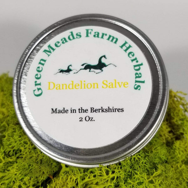 Green Meads Farm Herbals | Dandelion Salve | 2oz