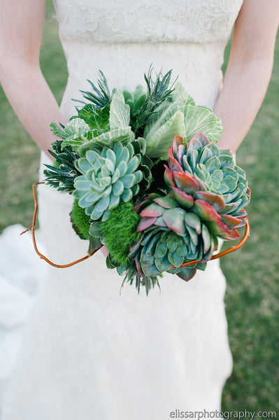 Succulent Bouquet - The Blooming Idea Florst - The Woodlands, Texas