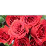Infinite Love (36 Roses) - The Blooming Idea Florst - The Woodlands, Texas