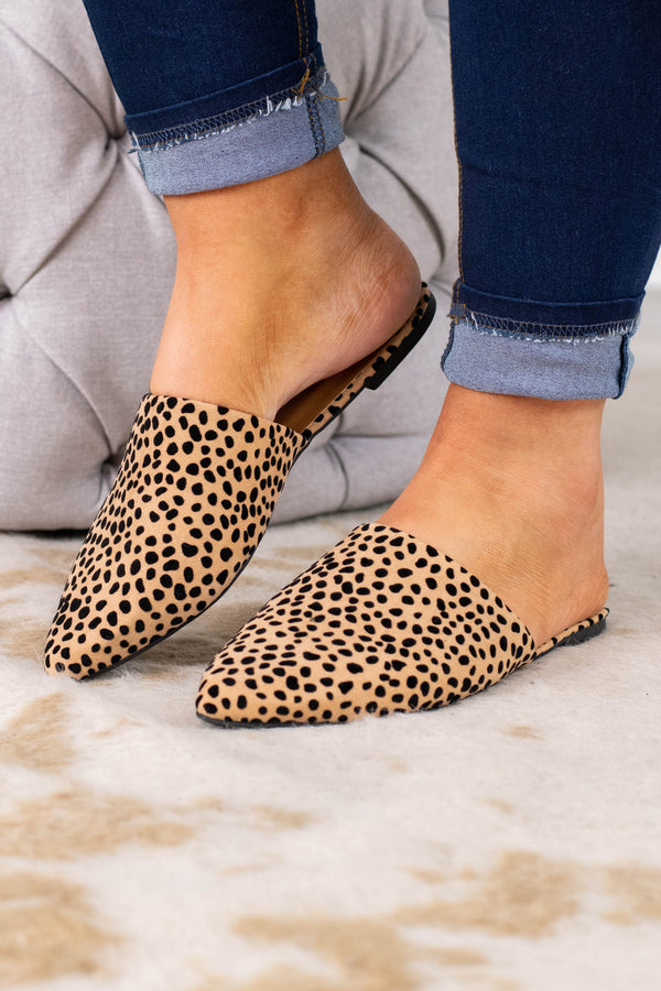 mules, slip on, flat, pointy toe, closed toe, black, brown, leopard