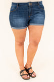 Brave Spirit Shorts, Dark Wash
