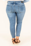 Summer In The Hamptons Skinny Jeans, Denim