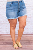shorts, cut offs, frayed hems, ripped, light blue, faded