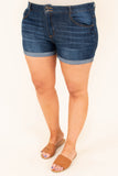 The Tide Is High Shorts, Medium Wash