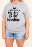 tshirt, short sleeve, gray, graphic, my dog is my valentine, heart, dog ears, black, comfy, valentines